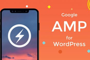 Jasa Install Plugin AMP for WP Pro Original Murah